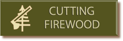 Click here to find out more about obtaining firewood permits on the forest.