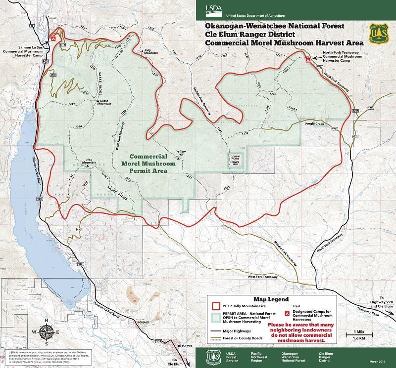 Okanogan Wenatchee National Forest Home