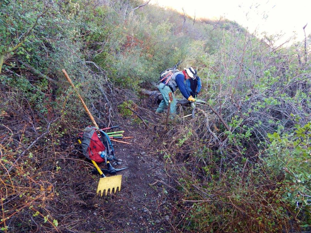 volunteers on working on a trail