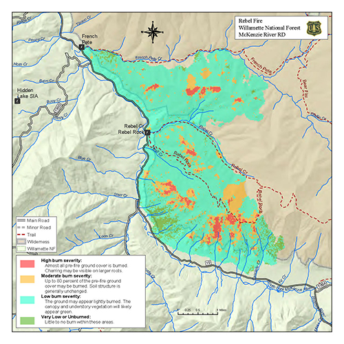 Willamette National Forest Fire Management
