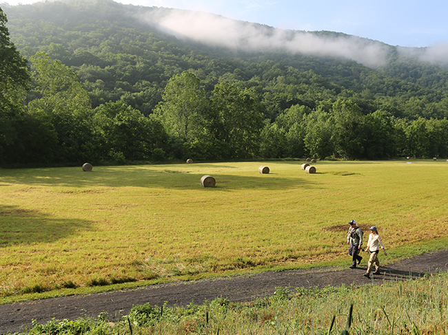 Darney Newman walks along a trail new Seneca Rocks with representatives from Trout Unlimited.