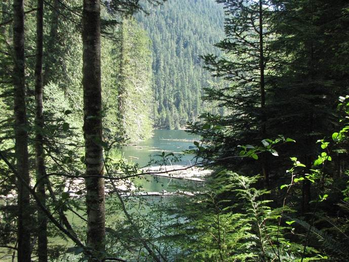 Lena Lake through the trees