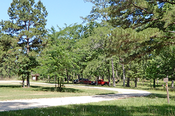 A view of camping area at Kelly's Pond on the Sam Houston National Forest.