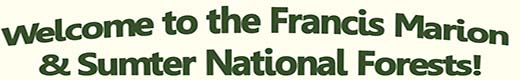 Welcome to the Francis Marion & Sumter National Forests!