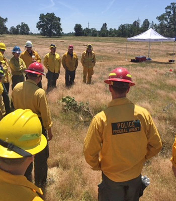 Firefighters stand in a field discussing a fire investigation.