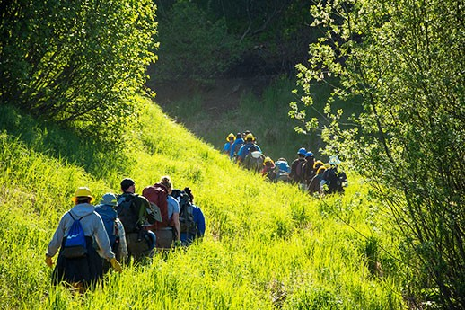 Two groups of hikers, separated by a few yards, walk along a sunny wooded trail.