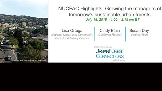 Town with trees in it and information regarding the next Connections Webinar.
