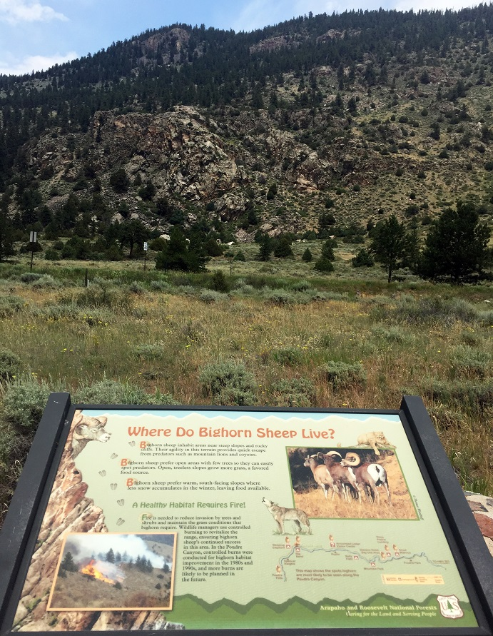 Interpretive sign along the Upper Poudre River
