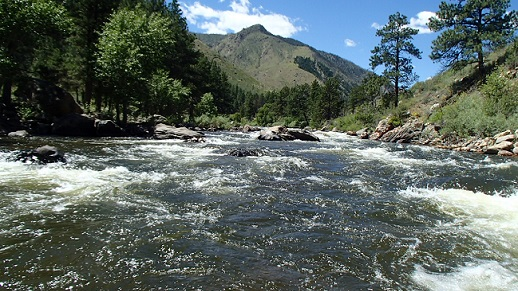 View from the water on the Poudre River