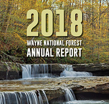 Text silhouetted in images of forest on graphic says 2017 Wayne National Forest Annual Report.