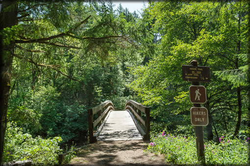 Nature Trail #1508 - Trail with signs and bridge