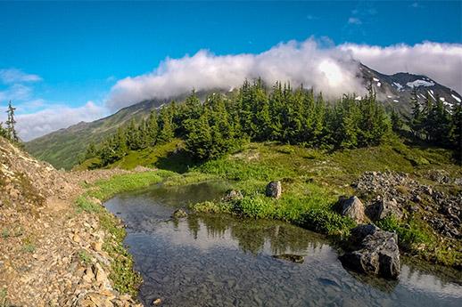 Upper Winner Creek Trail scenic view.