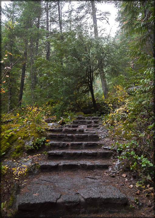 Toketee Falls Trail #1495 - View of stairs