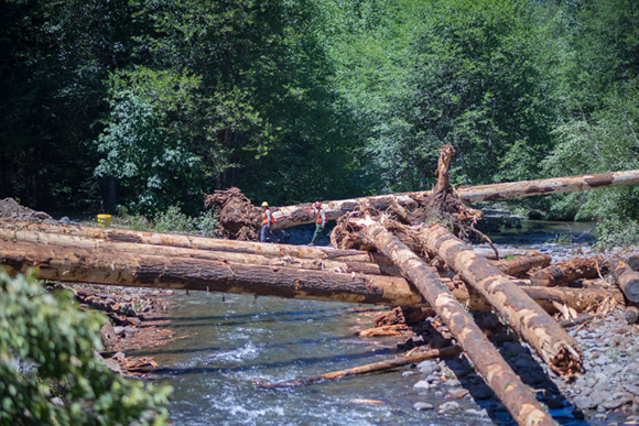 Large woody debris placed in a stream channel