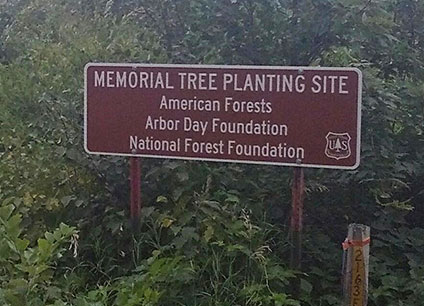Sign outside the Memorial Tree Planting