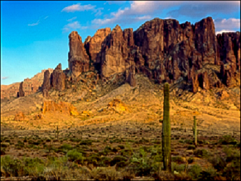 Saguaro cactus with rugged mountain sin background