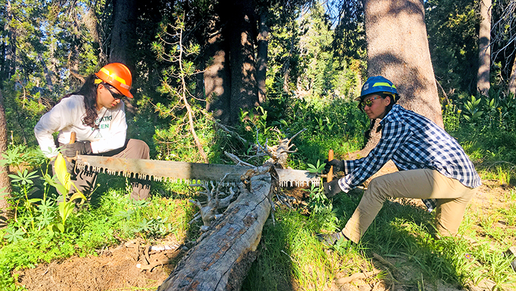 Teenagers learn about forest management, how to saw logs, plants trees, clear trash, maintain trails.