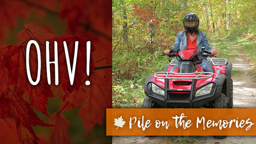 Learn what roads are open to OHV riding.
