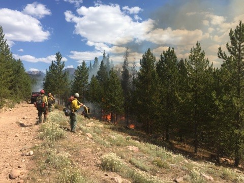 Photo showing fire personnel working on the Murdock Fire September 3, 2018