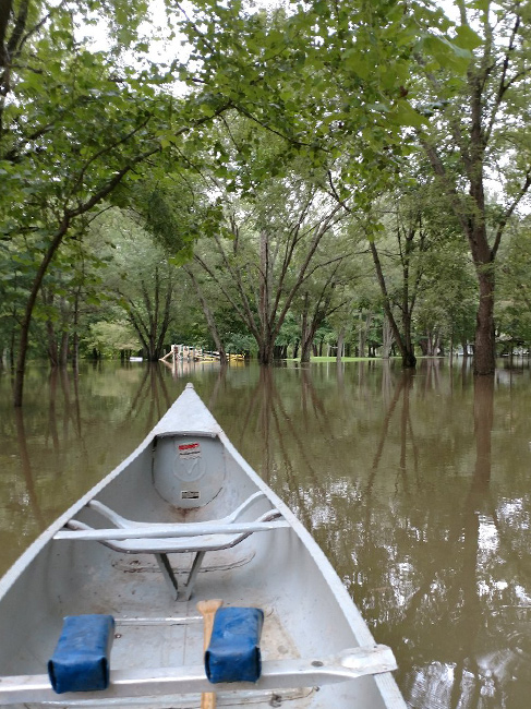 A canoe glides through a flooded campground grove.