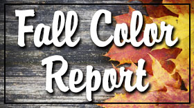 Check out the fall color report