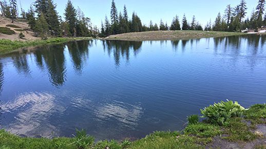 Square Lake in Yolla Bolly Middle Eel Wilderness