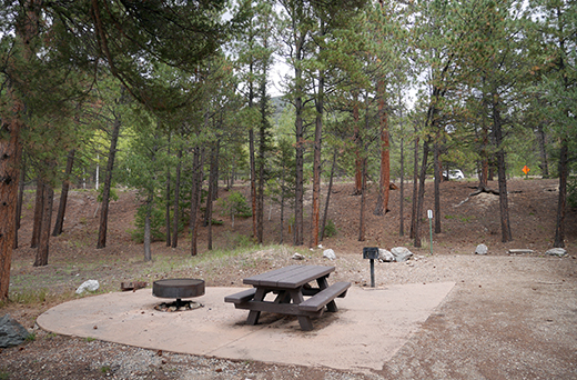 Accessible campsite with concrete below table and around fire grill with trees in background
