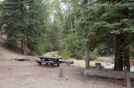 Campsite with picnic table and fire pit near muddy creek in the trees