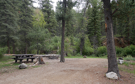 Campsite with picnic table at the end of a road with trees in background