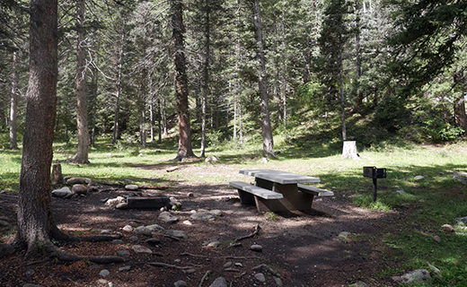 Campsite under the evergreen trees with concrete picnic table, fire grill and fire ring