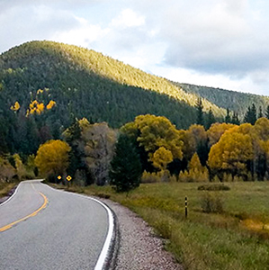 Fall colors in trees on the right side with highway curving along left side of photo
