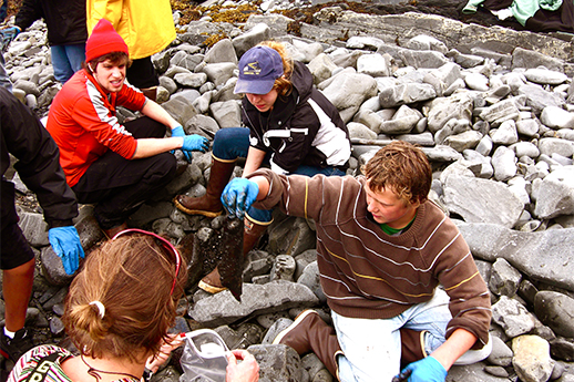 A group of youth assessing remaining oil on a beach more than 30 years after an oil spill.