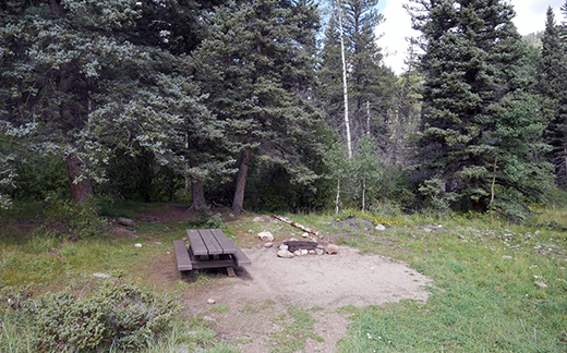 Campsite with picnic table and fire ring at end of road with trees behind it