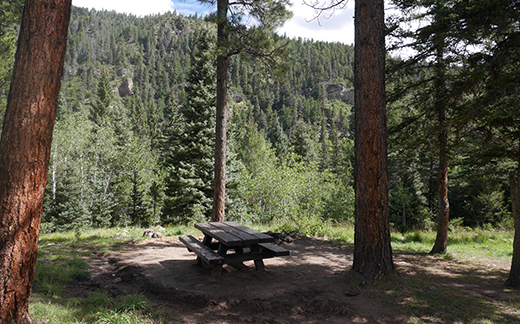 Campsite with scenic view of tree covered mountain