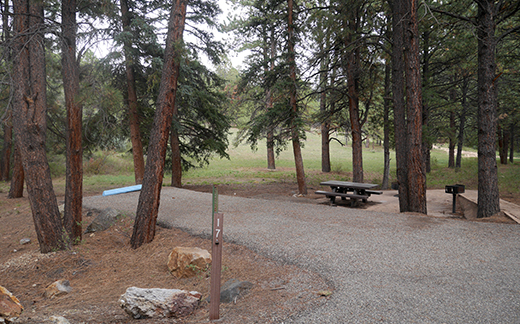 Campsite 17 from a distance showing gravel parking place, trail to picnic area in the trees