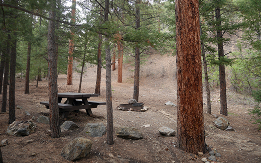 Campsite of picnic table and fire ring in the rocks and evergreen trees with hillside close by
