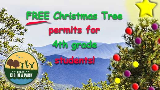 4th graders get free Christmas tree permits with their free Every Kid in a Park pass. Click image to learn more.