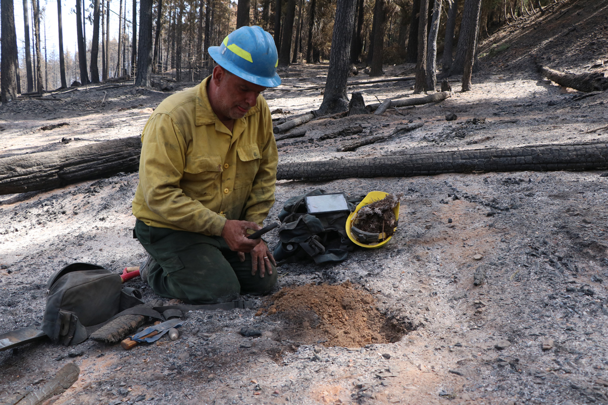 Soil Scientist on BAER Team examines soil in area burned by the Delta Fire