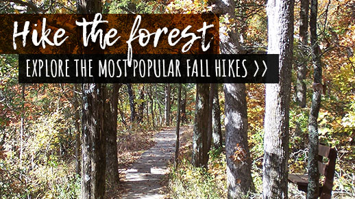 Explore the most popular spots to hike.