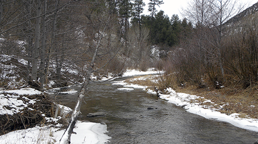 Winter on the Blue River (Forest Service photo)