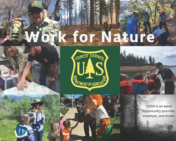 This collage shows employees on the Shasta-Trinity National Forest
