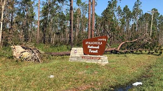 Apalachicola FS sign amid damage