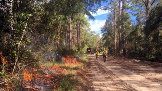 Fire operations on Apalachicola National Forest