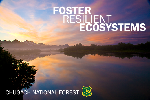 The Intro image has text that reads: Foster Resilient Ecosystems.