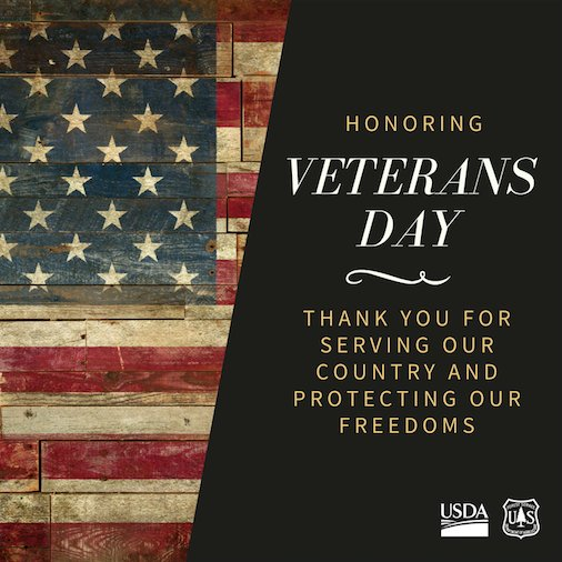 Honoring Veterans Day: Thank you for serving our country and protecting our freedoms.