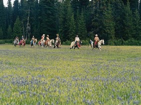 Indians on horseback riding single file through a meadow with wildflowers.