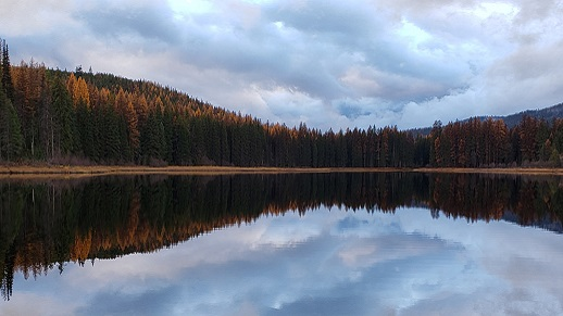 Lake in fall at Colville National Forest.