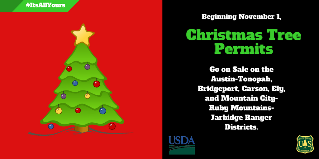 Christmas Tree Permits Graphic