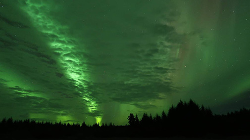 Greenish Northern Lights on the Tongass