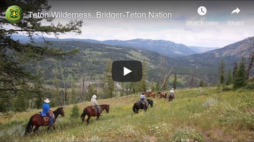 Horse trail ride with five riders and one pack horse walking through a meadow towards mountains.